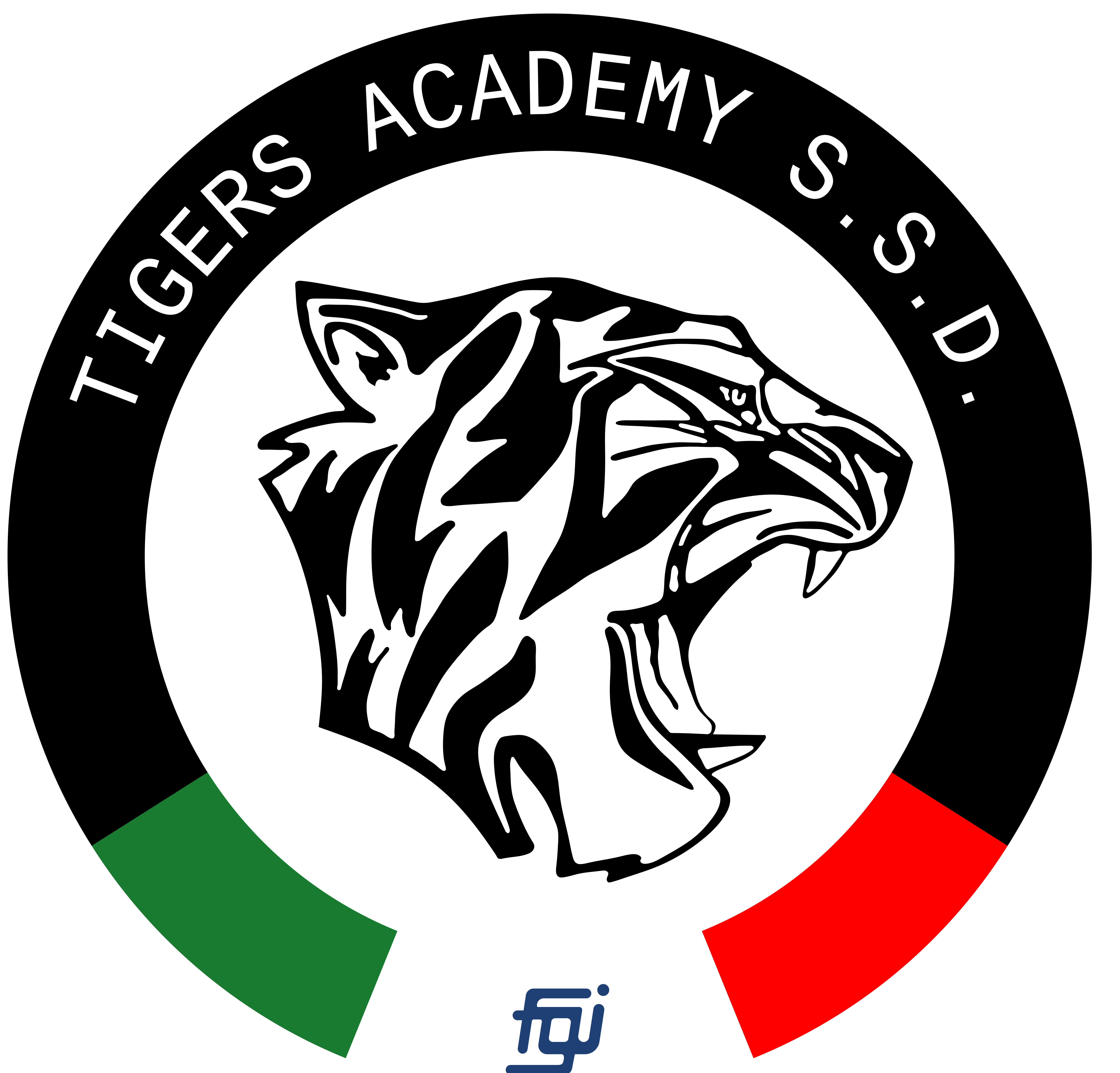 Tigers Academy SSD
